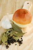 ziele cebulkowi zdjęcie stock