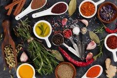Ziele, condiments i pikantność, Zdjęcia Stock
