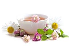 Ziele herbata od kuracyjnych rośliien na białym tle Ziołowy Med obraz royalty free