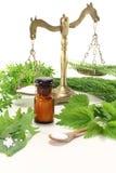 ziele homeopatia Obrazy Stock