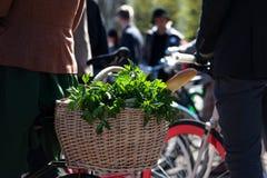 Ziele i baguette w koszu na bicyklu Zdjęcia Stock