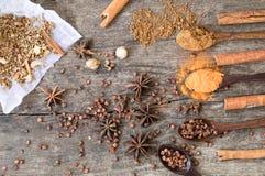 Ziele i pikantność na drewnianej desce Pikantności łyżka Obraz Stock
