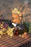 ziele istotny olej Fotografia Stock