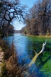 Zieleń jasnego woda, Frio rzeka, Teksas Obrazy Stock