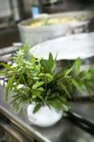 ziele kuchenni Zdjęcie Royalty Free