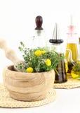 ziele kulinarny olej Obraz Stock