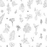 Ziele kwitną graficzny bezszwowy wzór rysującego graficznego tekstury tło, nakreślenie dla tapety, tkanina, projekta pakować Zdjęcia Stock