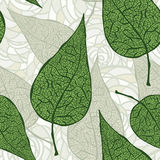 zieleń leafs bezszwowy rocznik Obrazy Royalty Free