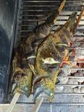 Ziele marinaded świeżej pstrąg ryba na kija opieczeniu na BBQ czerwieni ch Fotografia Stock