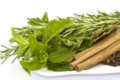 ziele pikantność Obraz Stock