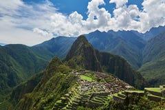 Zieleń tarasy w Mach Picchu Obraz Stock