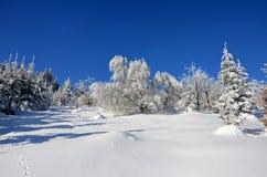 Zieleinheit des Schnees landscape Lizenzfreies Stockfoto