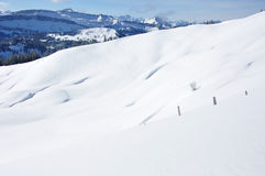 Zieleinheit des Schnees landscape Stockbilder