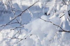 Zieleinheit des Schnees landscape Lizenzfreies Stockbild
