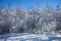 Zieleinheit des Schnees landscape Lizenzfreie Stockbilder