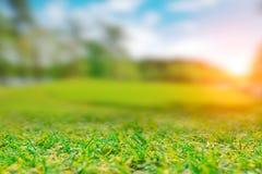 Zieleni śródpolni trawa krajobrazu wzgórza zdjęcie royalty free