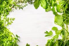 Zieleni świezi ziele mieszają na białym drewnianym tle Zdjęcia Royalty Free