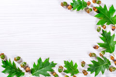 Zieleni acorns na drewnianym stole Fotografia Royalty Free