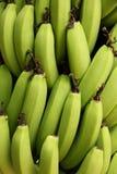 Zieleni banany zdjęcia stock
