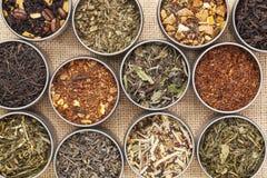 Zieleni, bielu, czarnej i ziołowej herbata, Zdjęcie Royalty Free