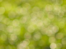 Zieleni bokeh światła w słonecznym dniu Obrazy Royalty Free