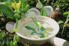 Zieleni currych składniki obrazy stock