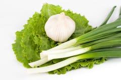 zieleni czosnków warzywa Obrazy Royalty Free