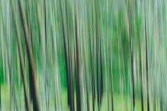 Zieleni drzewa abstrakcjonistyczni Zdjęcia Stock