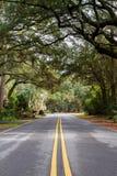 Zieleni drzewa przy Hilton głową Zdjęcie Stock