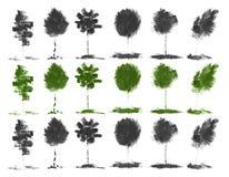Zieleni drzewa z organicznie naturalnym tłem z eco grunge tusz do rzęs ołówkową teksturą Zdjęcia Stock