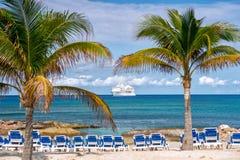 Zieleni drzewka palmowe na piaskowatej plaży linii brzegowej blisko oceanu Zdjęcie Stock