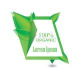 Zieleni, eco, życiorys i organicznie etykietka, Obrazy Stock
