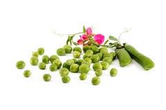 zieleni grochy Obraz Stock