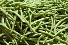 zieleni haricots Obrazy Royalty Free