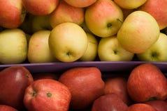 Zieleni i czerwoni jabłka obrazy royalty free