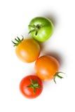 Zieleni i czerwoni pomidory Zdjęcie Stock