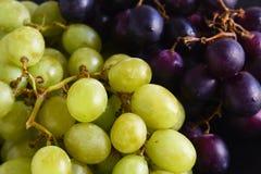 Zieleni i purpurowi winogrona jako karmowy tło, zamykają up z sele Obraz Stock