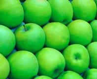 Zieleni jabłka r dla sprzedaży, Rolniczy kulty r w ogródzie ściśle pakują obraz stock