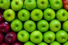 Zieleni jabłka wszystko na rzędzie Zdjęcie Royalty Free