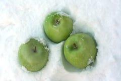 Zieleni jabłka Zdjęcia Royalty Free