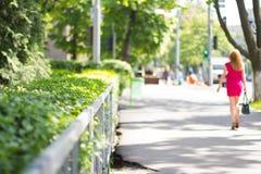 Zieleni krzaki w miasto parku Obrazy Royalty Free