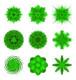 zieleni kwiatów kształty Fotografia Royalty Free