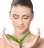 zieleni liść kobiety potomstwa Zdjęcia Royalty Free