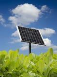 zieleni liść panel słoneczny Obraz Stock