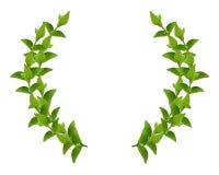zieleni liść wianek Fotografia Royalty Free