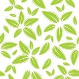 zieleni liść wzór bezszwowy Obraz Stock