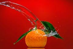 zieleni liść pluśnięcia tangerine woda Zdjęcia Stock
