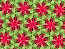 Zieleni menchii i liści kwiat Obraz Royalty Free