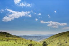 Zieleni niebo z chmurami i wzgórze dzikie trawy Fotografia Stock