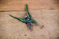 zieleni ośniedziali ogrodowi secateurs zdjęcie royalty free